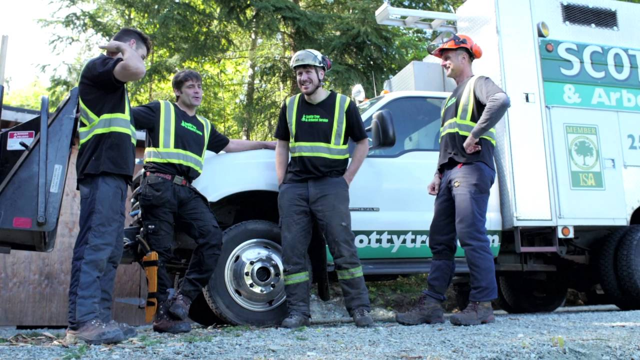 Arborist Consultations-Delray Beach Tree Trimming and Tree Removal Services-We Offer Tree Trimming Services, Tree Removal, Tree Pruning, Tree Cutting, Residential and Commercial Tree Trimming Services, Storm Damage, Emergency Tree Removal, Land Clearing, Tree Companies, Tree Care Service, Stump Grinding, and we're the Best Tree Trimming Company Near You Guaranteed!