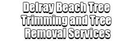 Delray Beach Tree Trimming and Tree Removal Services
